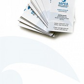 SEFEA - Corporate Identity